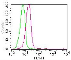 Monoclonal Antibody to Caspase-3 (Pro and Active) (Clone: ABM1C12)