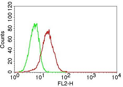 Fig-2: Intracellular flow analysis of TLR6 in THP-1 cells using 0.5 µg/10^6 cells of TLR6 antibody (Clone: ABM1B50). Green represents isotype control; red represents anti-TLR6 antibody. Goat anti-Mouse PE conjugate was used as secondary antibody.