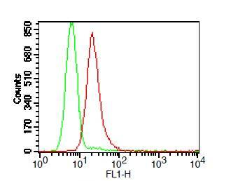 Fig-1: Intracellular flow analysis of TLR9 FITC conjugated in Ramos cell line using 0.5 µg/10^6 cells of TLR9 FITC conjugated antibody (Clone: ABM1C51). Green represents isotype control; red represents anti-TLR9 FITC conjugated antibody.
