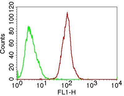 Monoclonal Antibody to TLR8/CD288 (Clone: ABM15F6)
