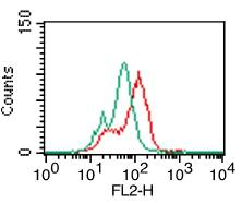 Fig-2: Intracellular flow analysis of hTLR5 in Monocytes using 0.5 µg/10^6 cells of hTLR5 antibody (Clone: ABM22G1). Green represents isotype control; red represents anti-hTLR5 antibody. Goat anti-mouse PE conjugate was used as secondary.