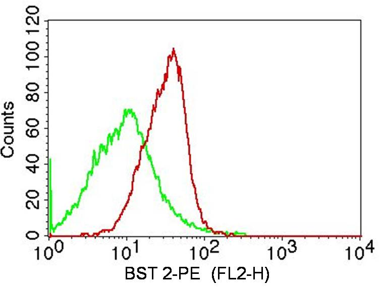 Monoclonal Antibody to BST 2 (Clone: ABM52D8)