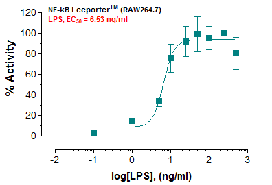 NF-kB Reporter – RAW264.7 Cell Line