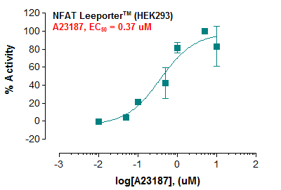 NFAT Reporter – HEK293 Cell Line