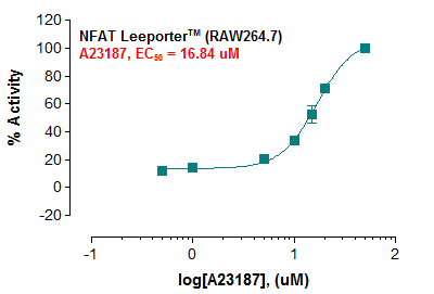 Fig-1: Induction of NFAT activity by calcium ionophore A23187 in NFAT Leeporter™ – RAW264.7 cells.
