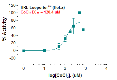 HRE Reporter – HeLa Cell Line
