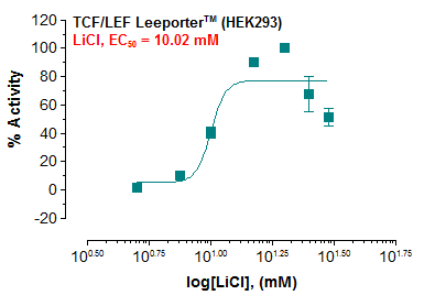 TCF/LEF (Wnt Signaling) Reporter – HEK293 Cell Line