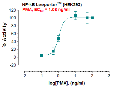NF-kB Reporter – HEK293 Cell Line