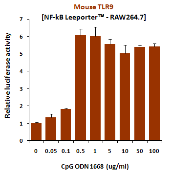 CpG ODN (1826) with negative control oligo, TLR9 ligand (mouse)