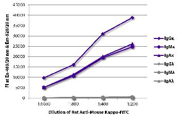 Rat Anti-Mouse Kappa-FITC